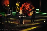 Róże Gali - 05.11.2012